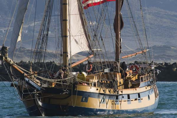 Hawaiian Chieftain |