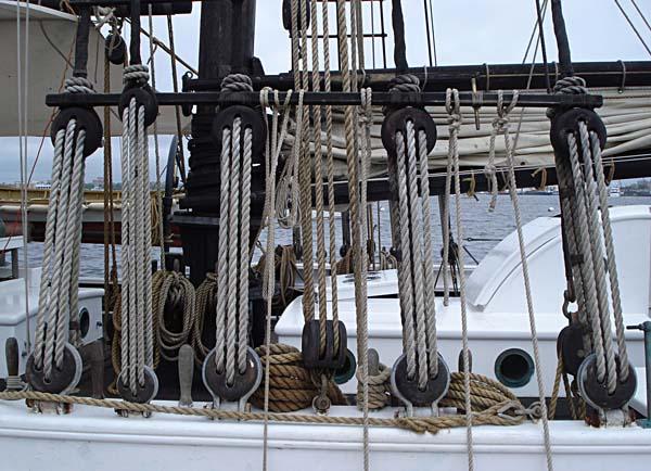 Alabama | The Black Dog Tall Ships