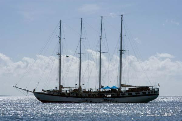 Polynesia |